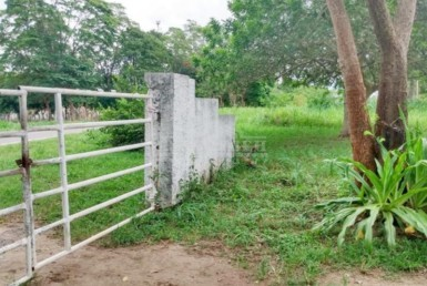 Inmobiliaria Issa Saieh Finca Arriendo/venta, , Manati imagen 0